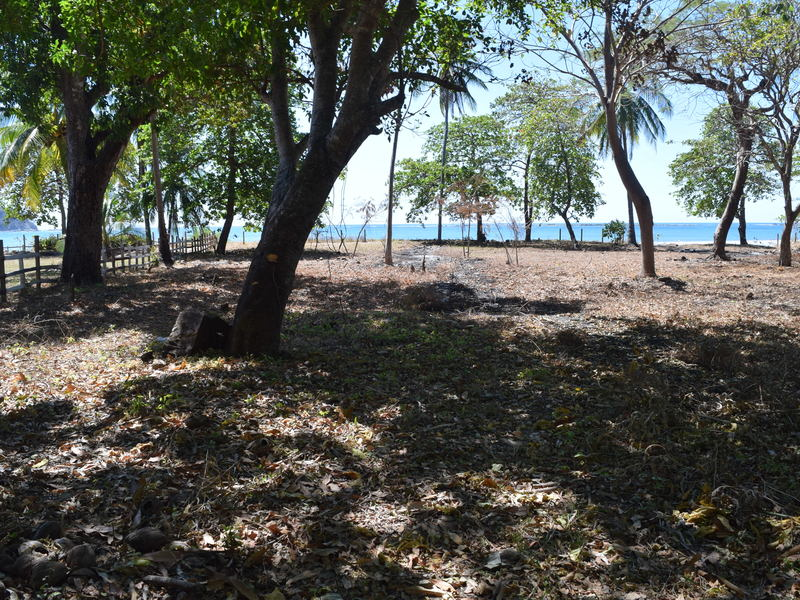 Samara-Costa-Rica-property-dominicalrealty9689-2.JPG