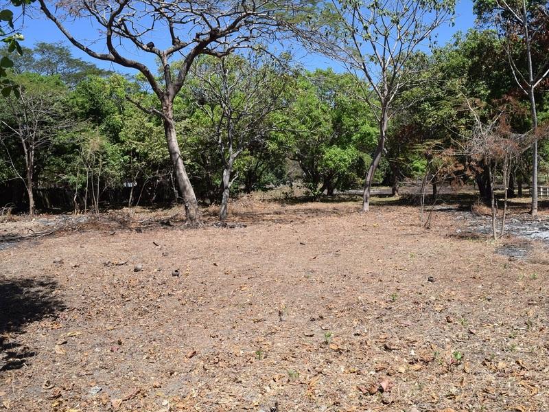 Samara-Costa-Rica-property-dominicalrealty9689-9.JPG