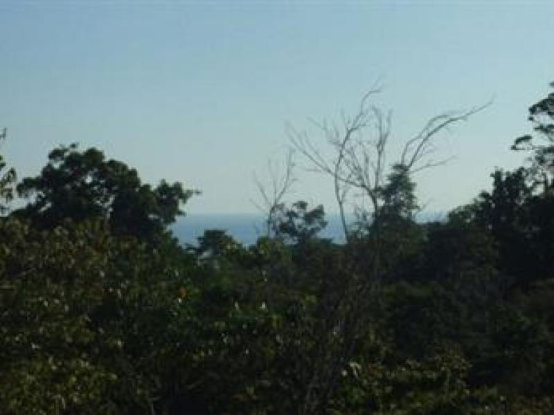 Manuel-Antonio-Costa-Rica-property-dominicalrealty1027-11.jpeg