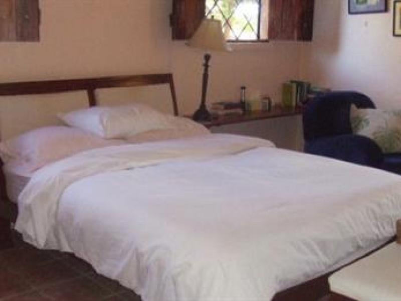 Manuel-Antonio-Costa-Rica-property-dominicalrealty1027-2.jpeg