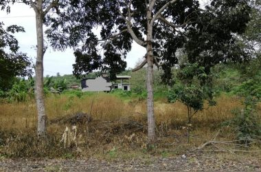 Ecuador - Near the Coast Home Construction Site For Sale in Montañita