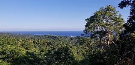 Roatan-Honduras-property-roatanlife1194-5.jpg