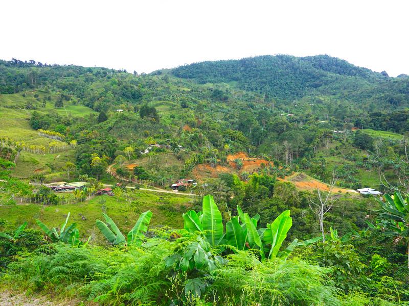 Perez-Zeledon-Costa-Rica-property-dominicalrealty9850-11.jpg