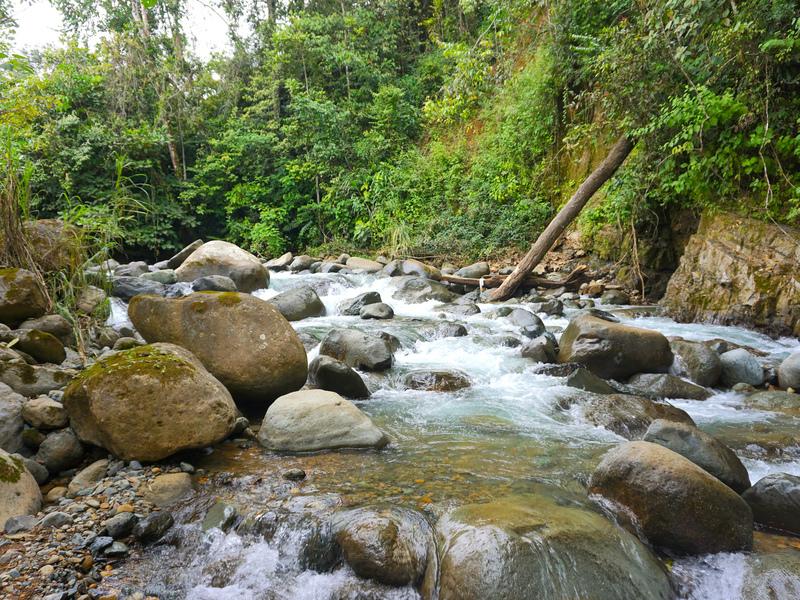 Perez-Zeledon-Costa-Rica-property-dominicalrealty9850-4.jpg