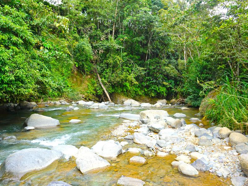 Perez-Zeledon-Costa-Rica-property-dominicalrealty9850-6.jpg