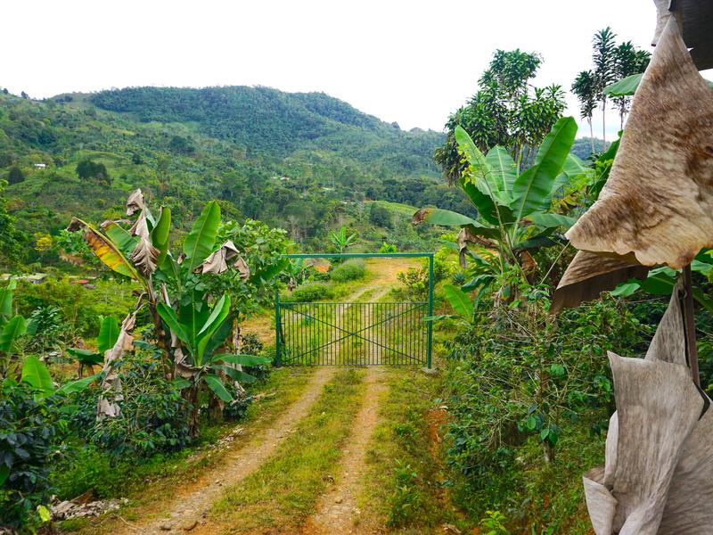 Perez-Zeledon-Costa-Rica-property-dominicalrealty9850-7.jpg