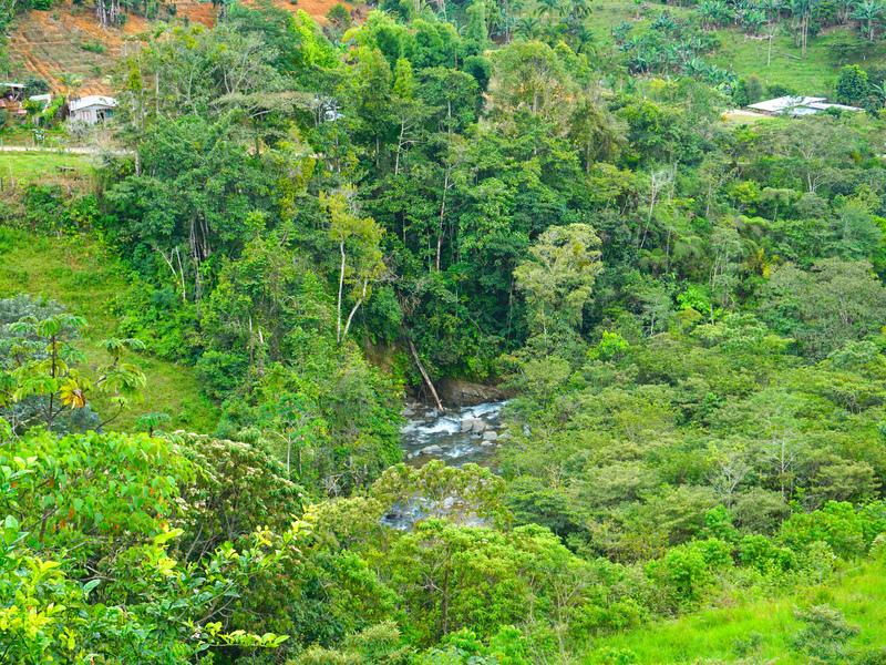 Perez-Zeledon-Costa-Rica-property-dominicalrealty9850-9.jpg
