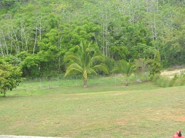 San-Carlos-Panama-property-panamarealtor10178.jpg