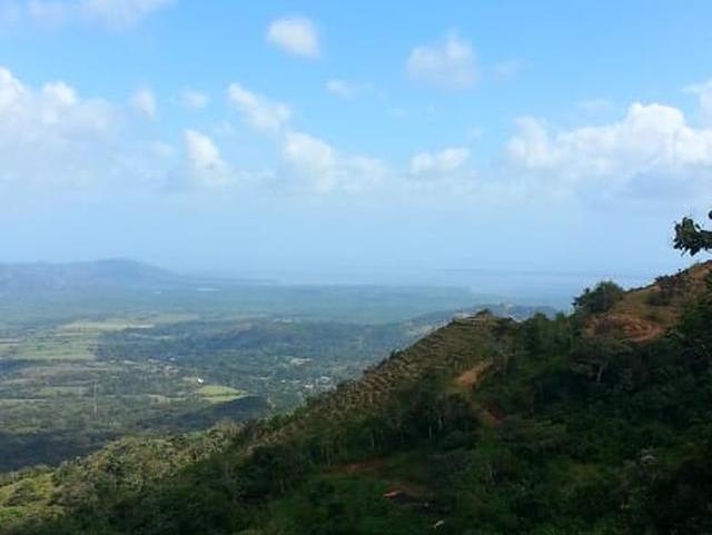 Campana-Mountain-Panama-property-panamarealtor10175-1.jpg
