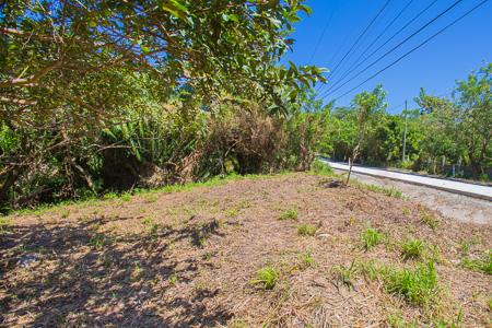 Roatan-Honduras-property-roatanlife1198-3.jpg