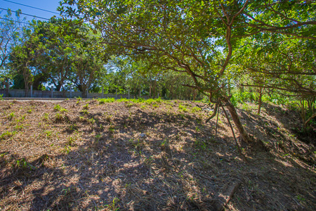 Roatan-Honduras-property-roatanlife1198-5.jpg