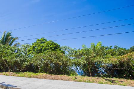 Roatan-Honduras-property-roatanlife1198-6.jpg