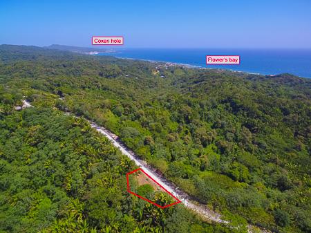 Roatan-Honduras-property-roatanlife1198-8.jpg