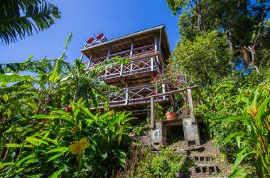 Honduras - West Bay Ridge, Roatan