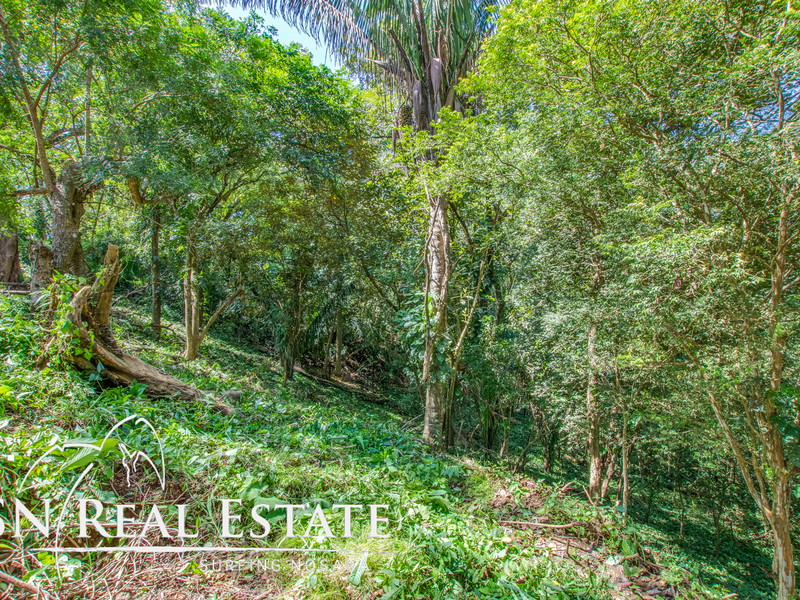 Nosara-Costa-Rica-property-dominicalrealty9929-11.jpg