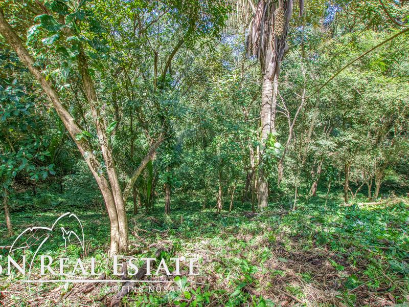 Nosara-Costa-Rica-property-dominicalrealty9929-2.jpg