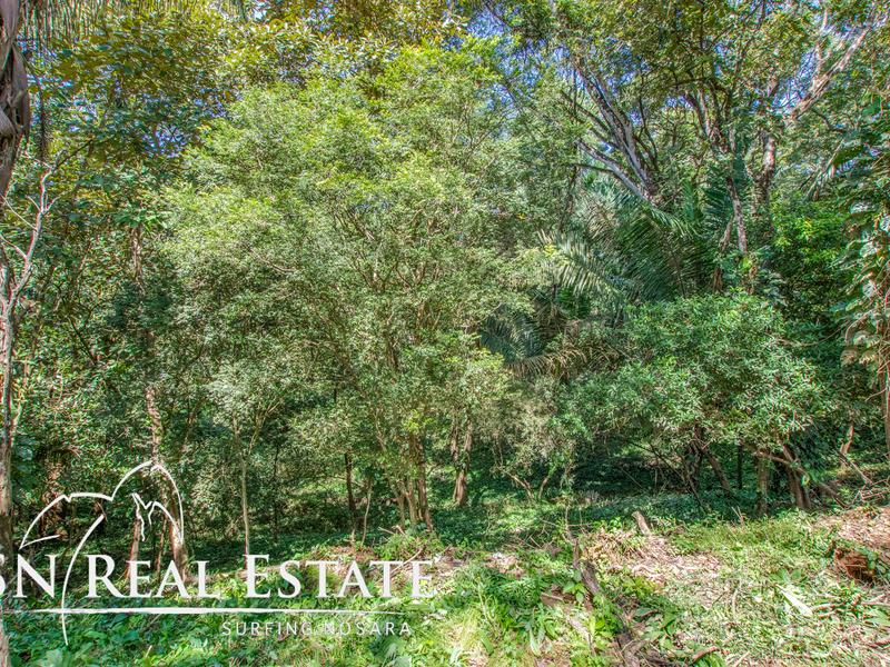 Nosara-Costa-Rica-property-dominicalrealty9929-3.jpg