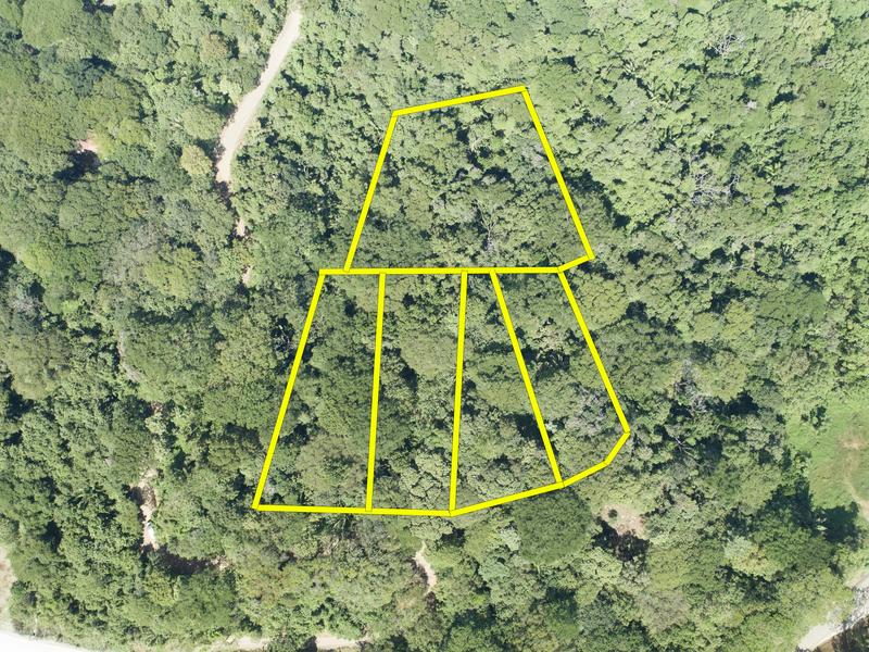 Nosara-Costa-Rica-property-dominicalrealty9929-4.jpg
