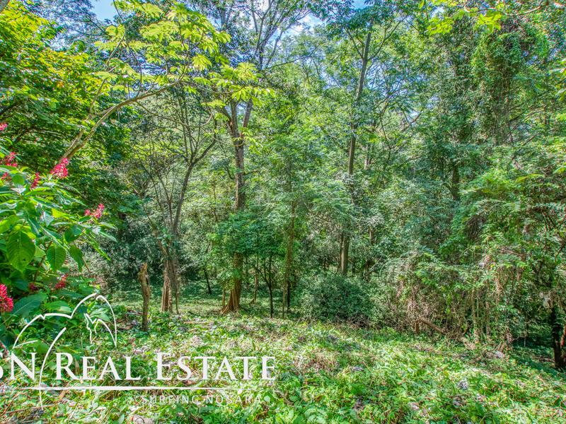 Nosara-Costa-Rica-property-dominicalrealty9929-6.jpg