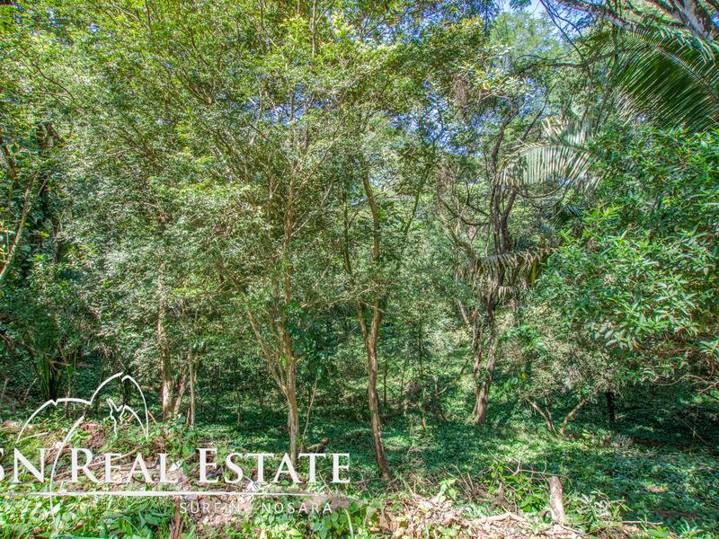 Nosara-Costa-Rica-property-dominicalrealty9929-7.jpg