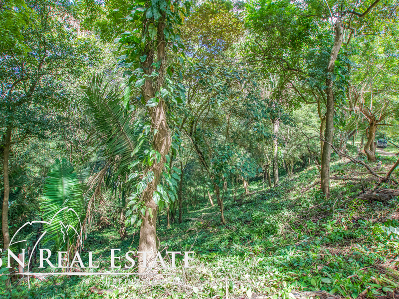 Nosara-Costa-Rica-property-dominicalrealty9929-8.jpg