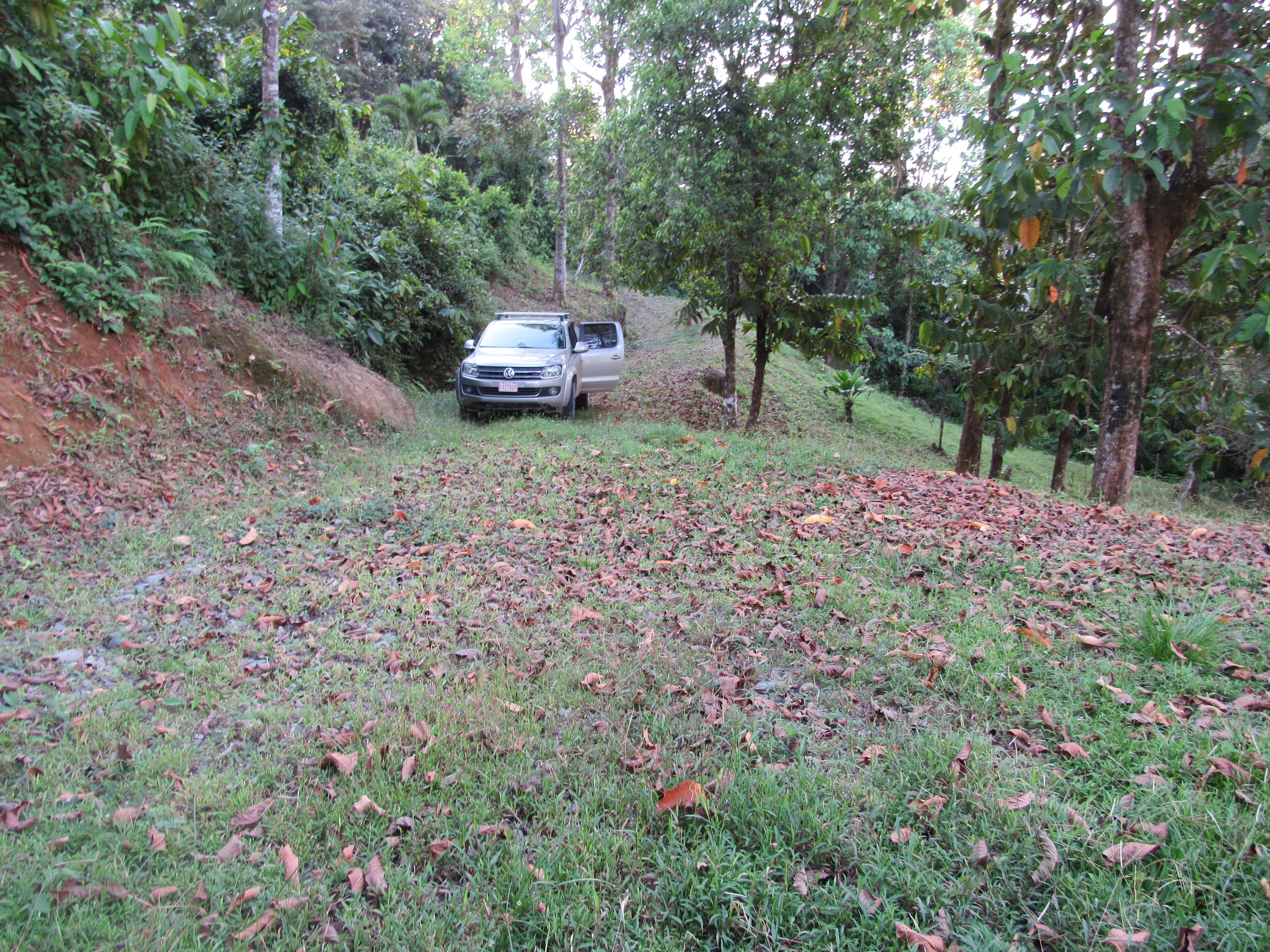 Matapalo-Costa-Rica-property-costaricarealestateMAT080-3.jpg