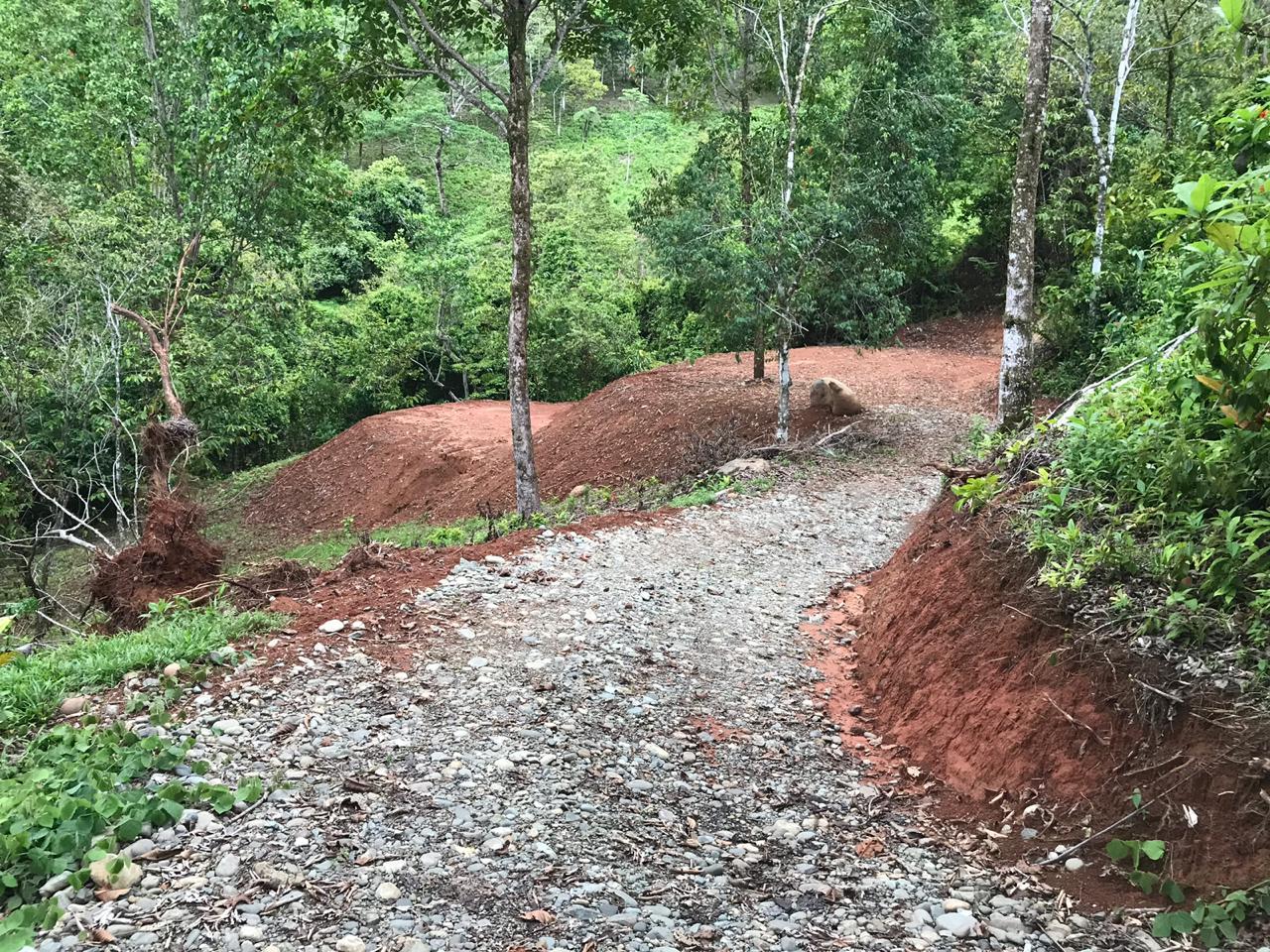 Matapalo-Costa-Rica-property-costaricarealestateMAT080-6.jpg