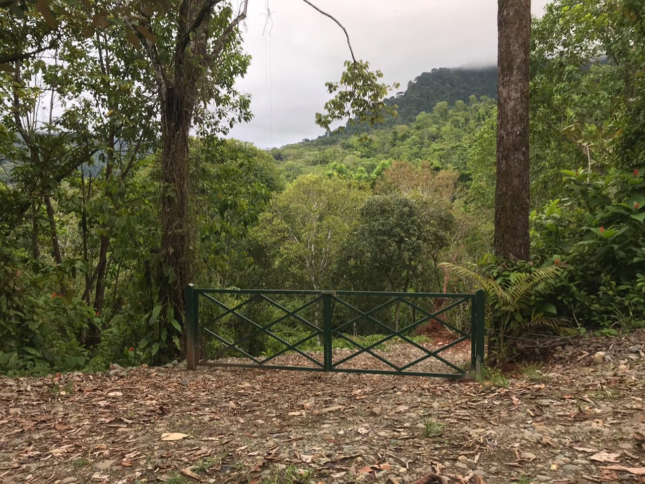Matapalo-Costa-Rica-property-costaricarealestateMAT080-7.jpg