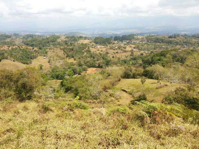 San-Isidro-Costa-Rica-property-costaricarealestateSI045-1.jpg