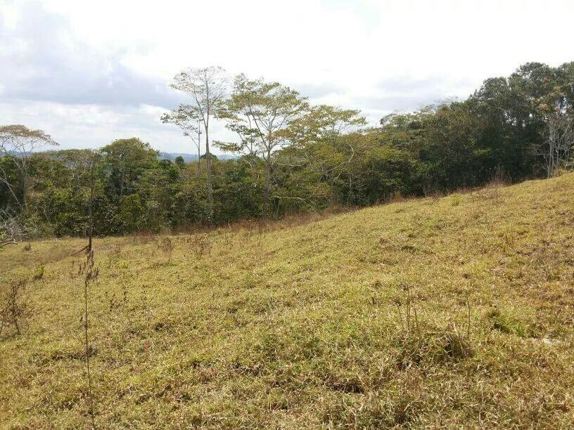 San-Isidro-Costa-Rica-property-costaricarealestateSI045-3.jpg