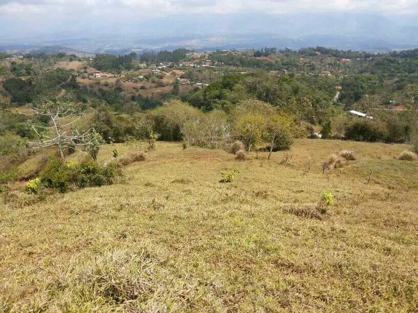San-Isidro-Costa-Rica-property-costaricarealestateSI045-4.jpg