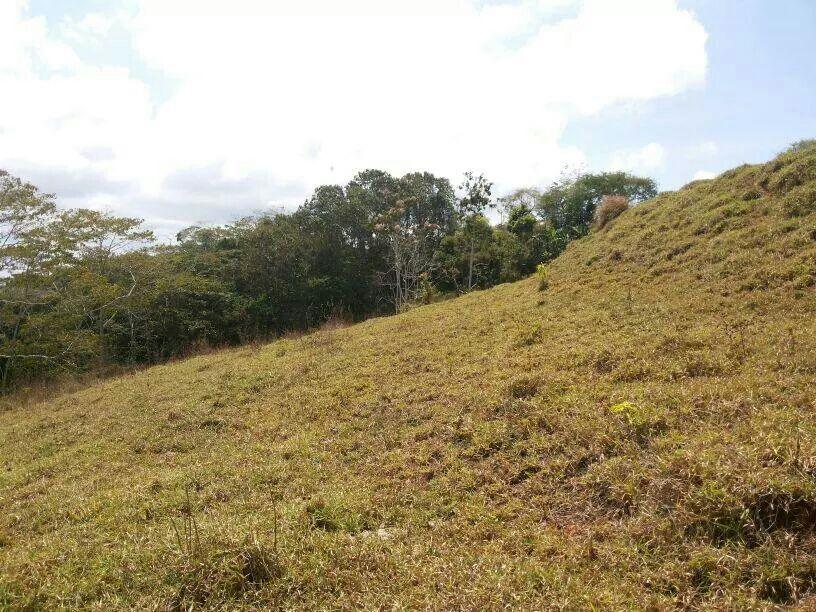 San-Isidro-Costa-Rica-property-costaricarealestateSI045-7.jpg