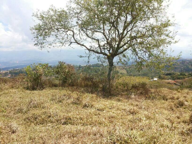 San-Isidro-Costa-Rica-property-costaricarealestateSI045.jpg