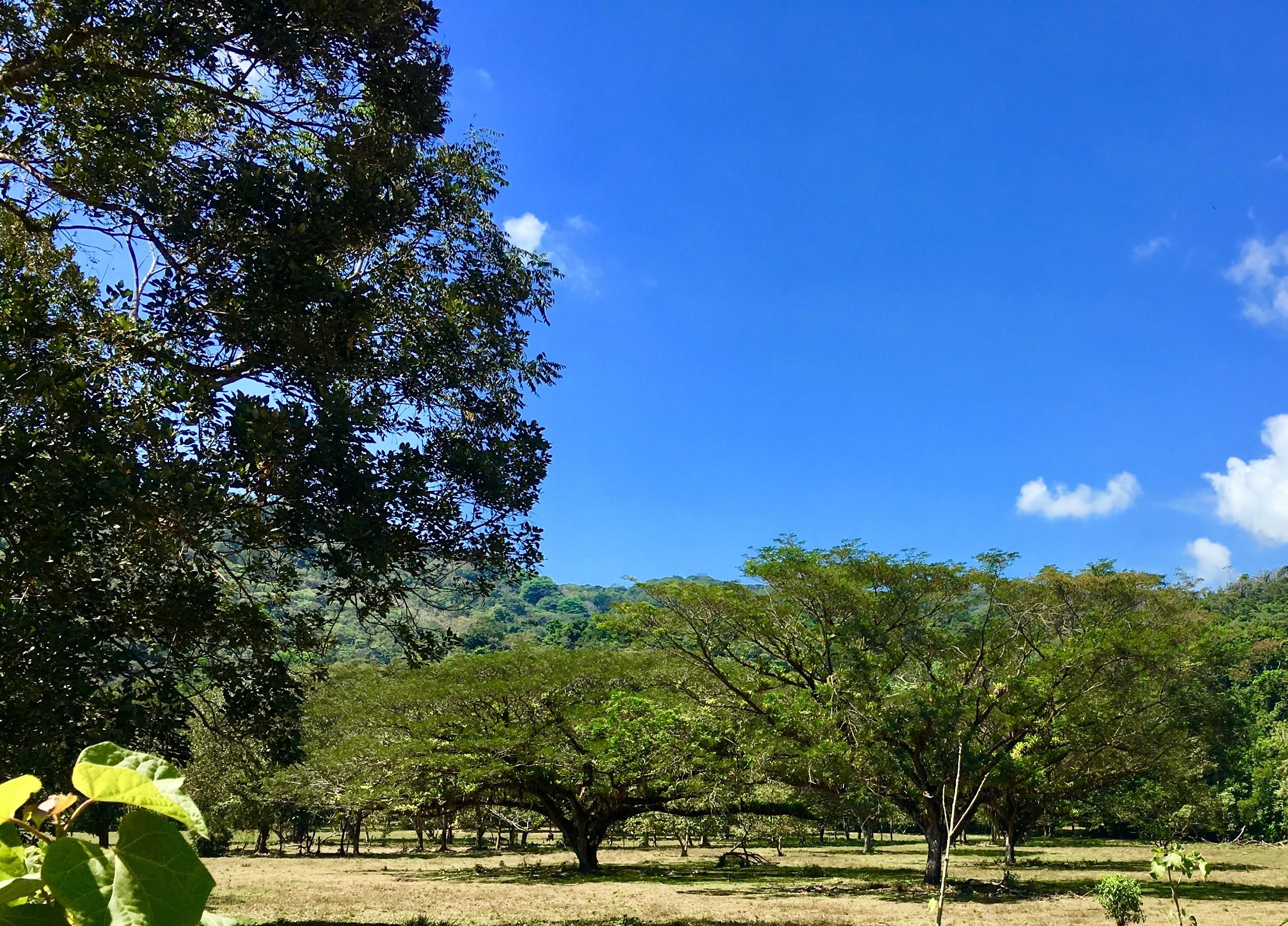 Dominical-Costa-Rica-property-costaricarealestateDOM331-1.jpg