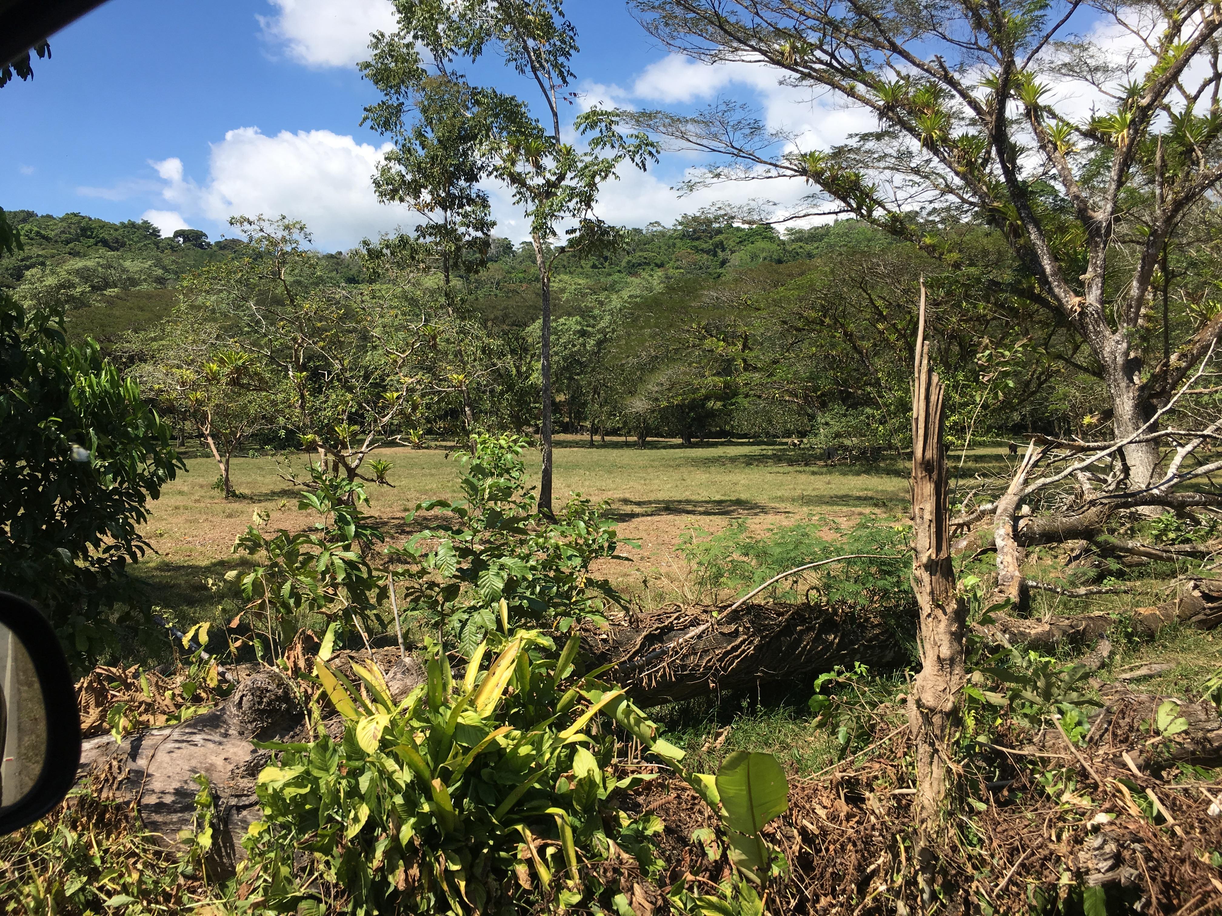 Dominical-Costa-Rica-property-costaricarealestateDOM331-2.jpg