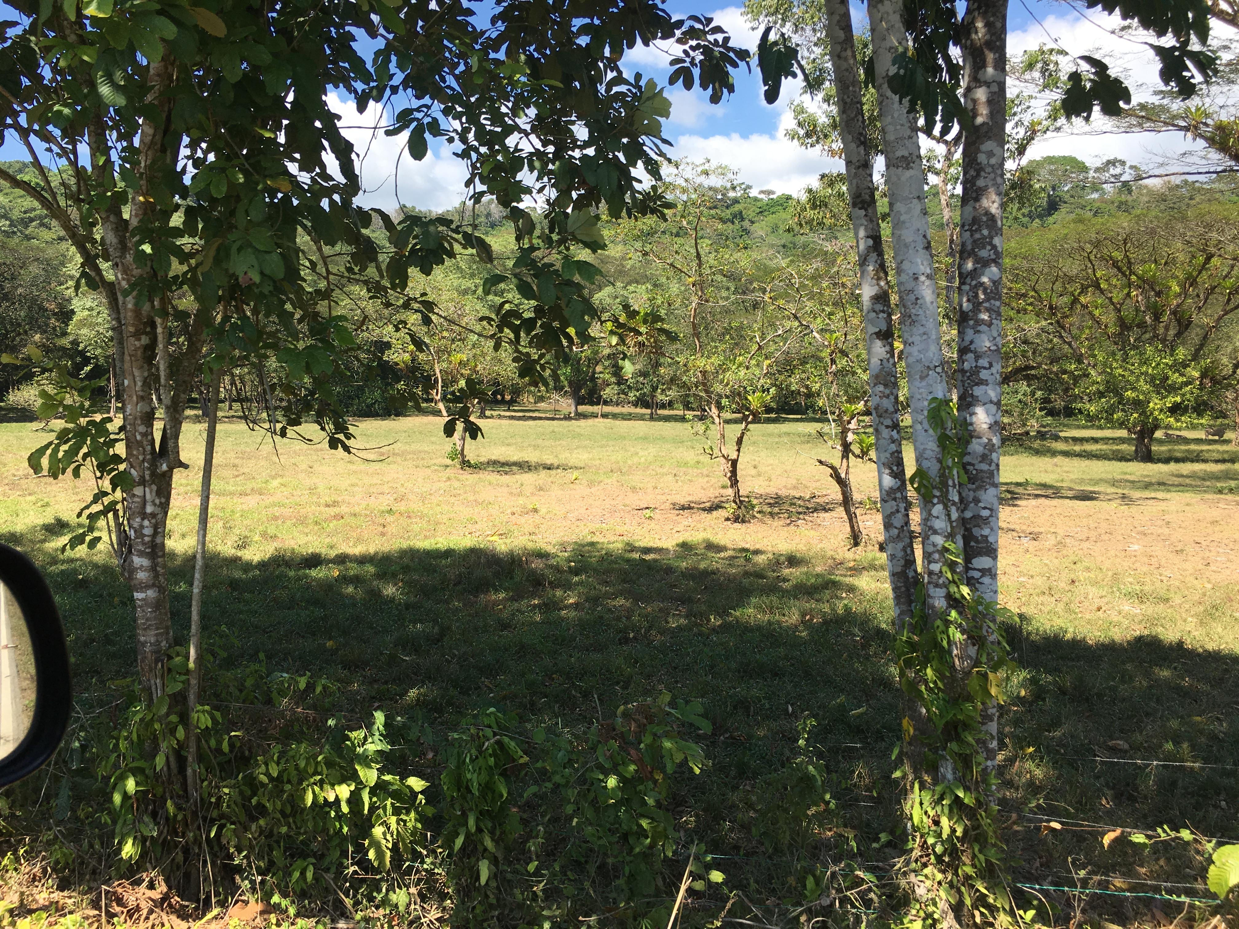 Dominical-Costa-Rica-property-costaricarealestateDOM331-3.jpg