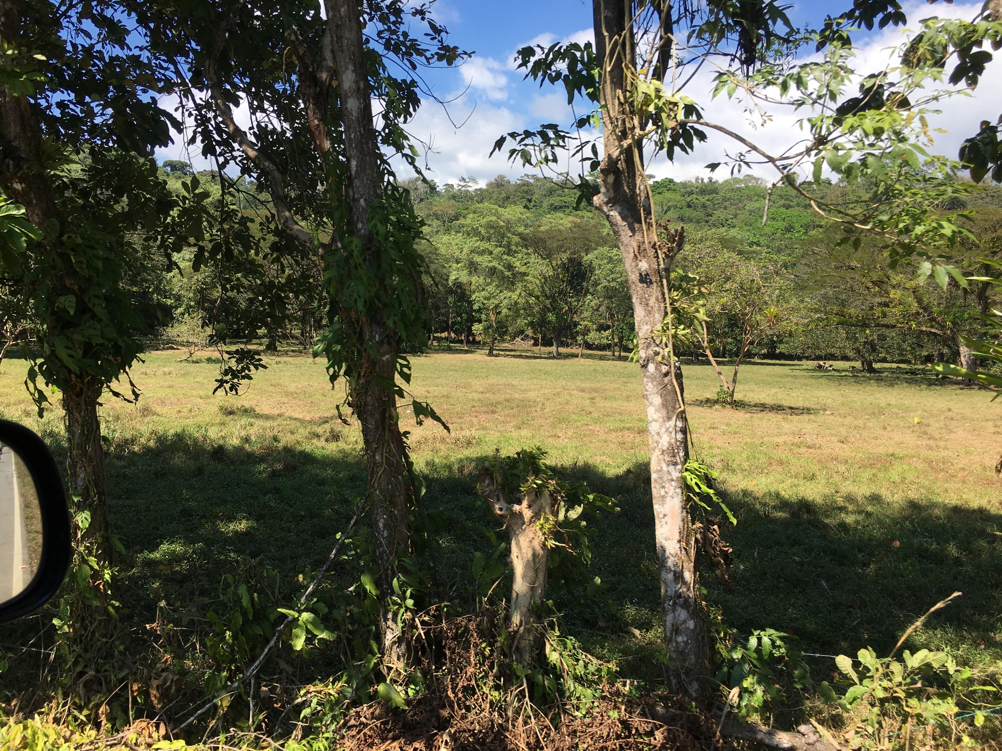 Dominical-Costa-Rica-property-costaricarealestateDOM331-4.jpg
