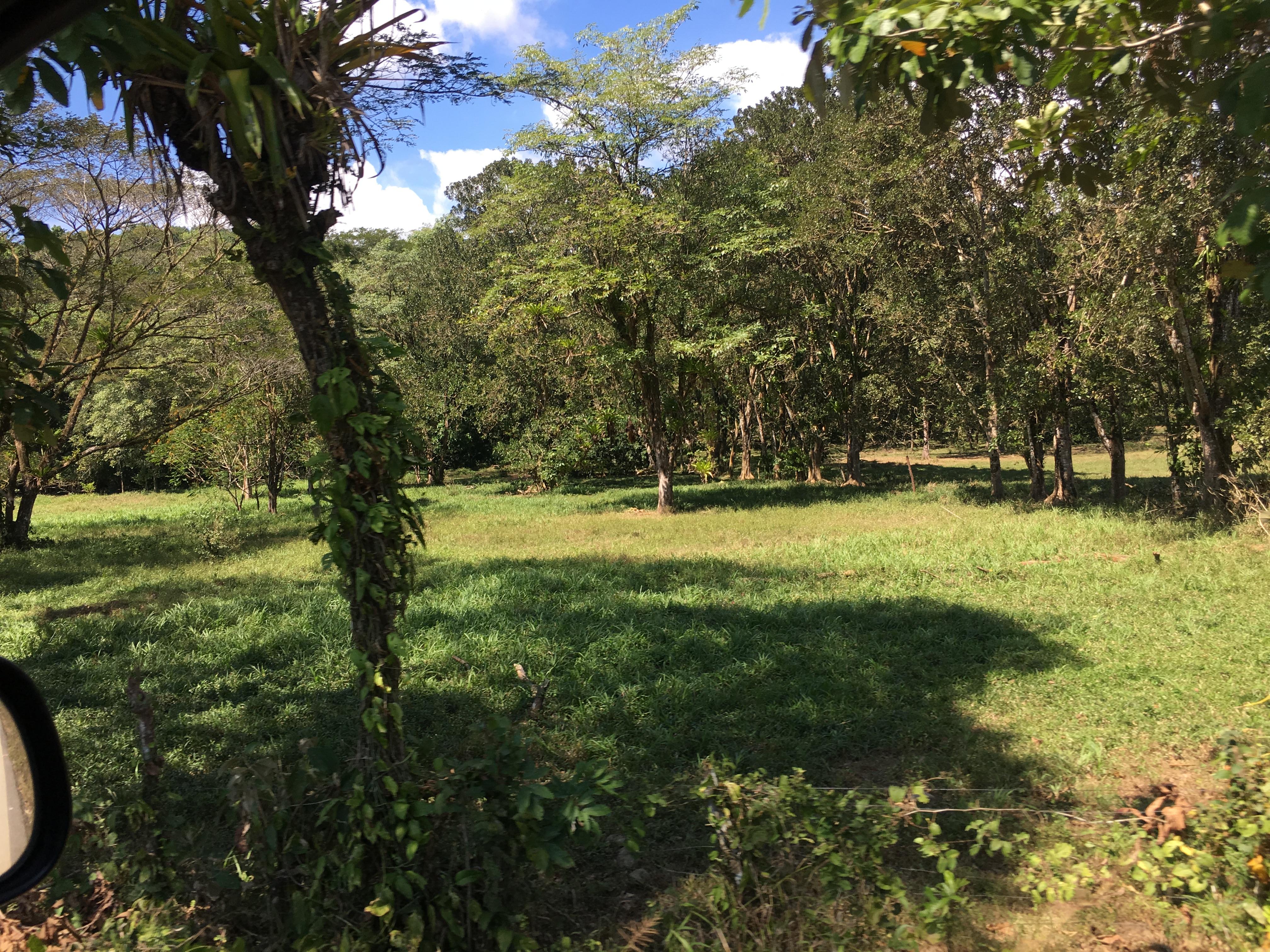 Dominical-Costa-Rica-property-costaricarealestateDOM331-6.jpg