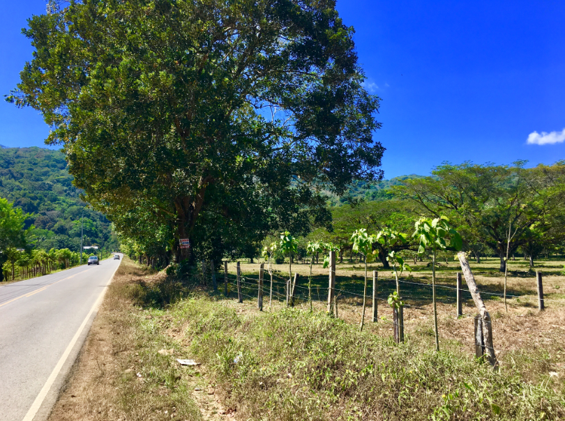 Dominical-Costa-Rica-property-costaricarealestateDOM331.png