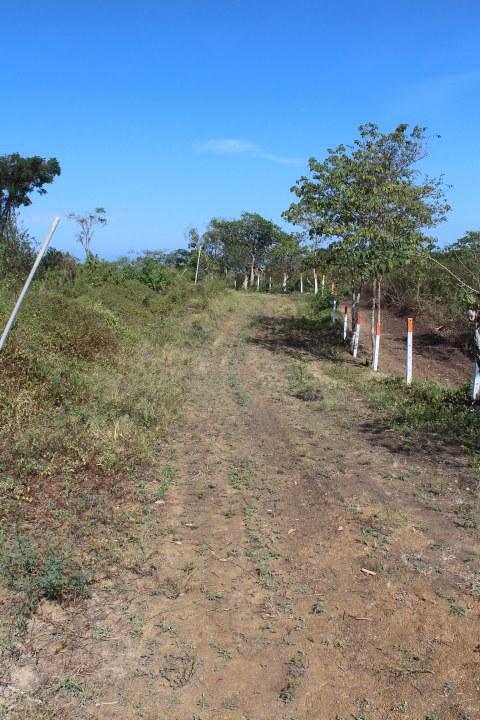 Manglaralto-Ecuador-property-LL1900013-2.jpg