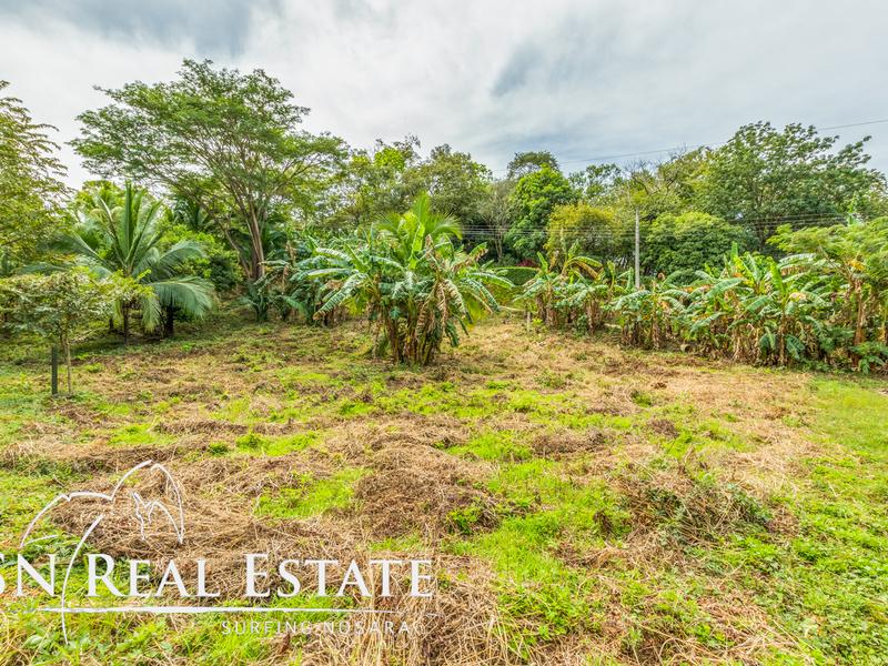 Nosara-Costa-Rica-property-dominicalrealty10050-1.jpg