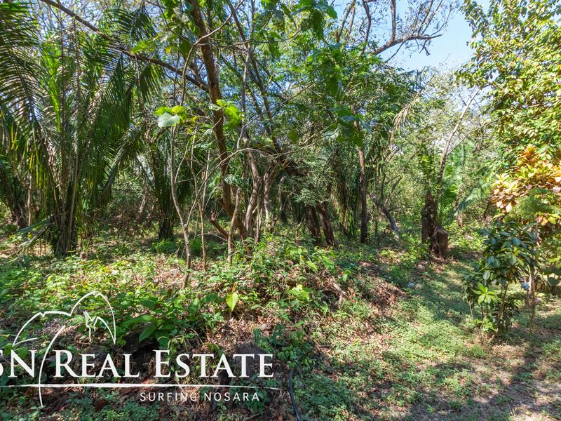 Nosara-Costa-Rica-property-dominicalrealty10051-10.jpg
