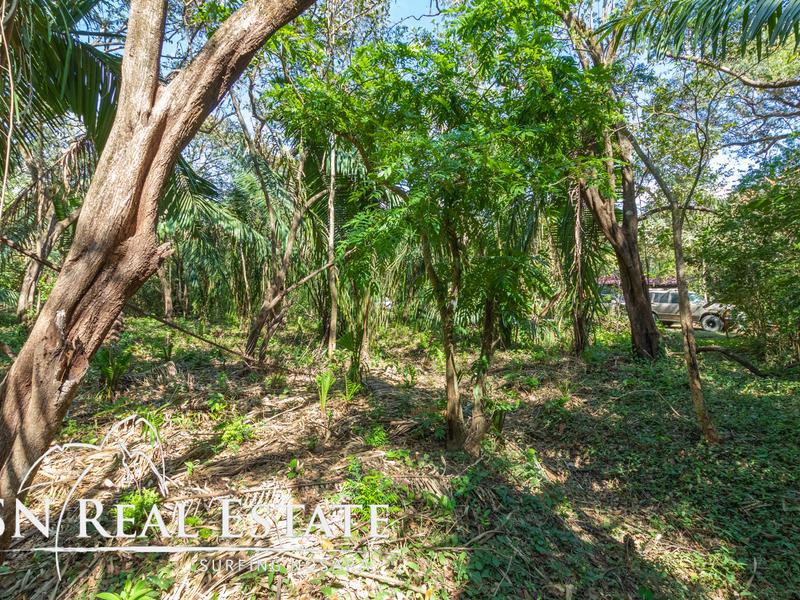 Nosara-Costa-Rica-property-dominicalrealty10051-2.jpg