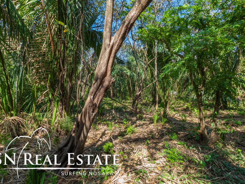 Nosara-Costa-Rica-property-dominicalrealty10051-4.jpg