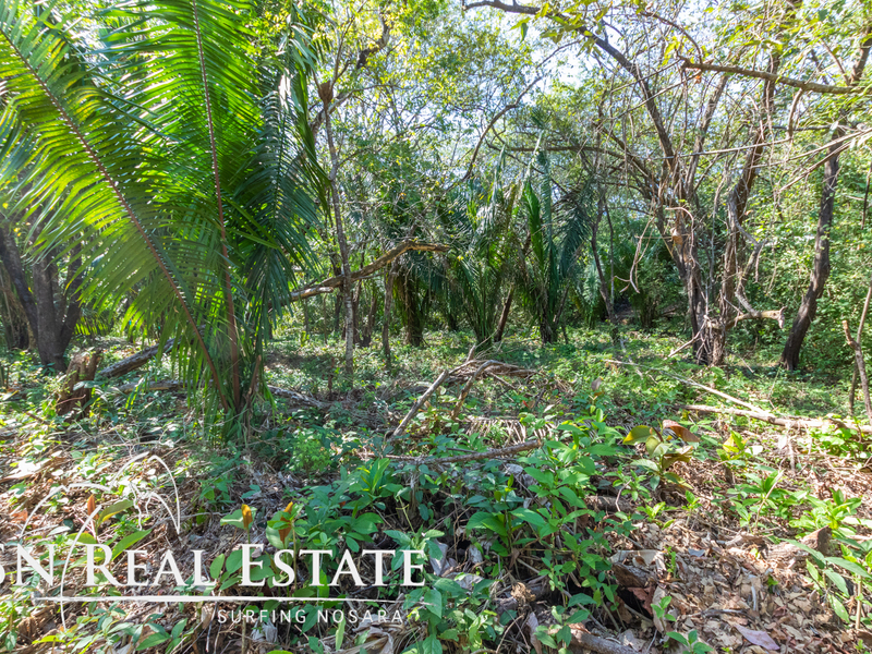 Nosara-Costa-Rica-property-dominicalrealty10051-6.jpg