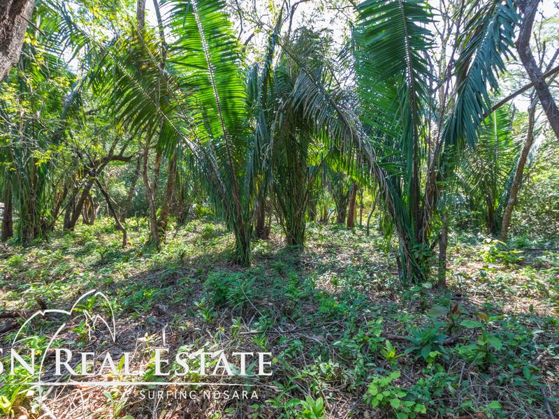 Nosara-Costa-Rica-property-dominicalrealty10051-7.jpg
