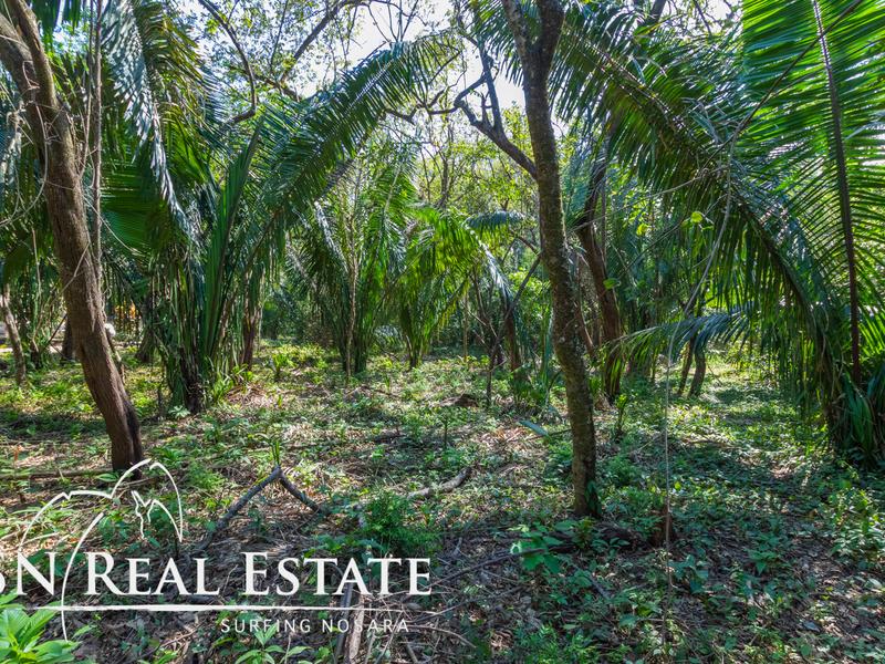 Nosara-Costa-Rica-property-dominicalrealty10051-8.jpg