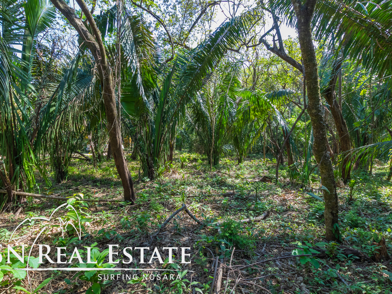 Nosara-Costa-Rica-property-dominicalrealty10051.jpg