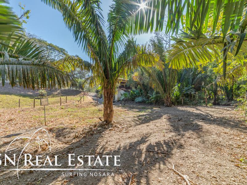 Nosara-Costa-Rica-property-dominicalrealty10065-4.jpg