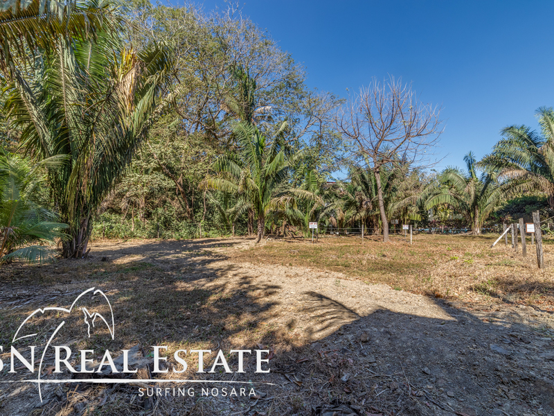 Nosara-Costa-Rica-property-dominicalrealty10065-5.jpg